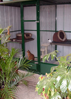 Cattery Melbourne